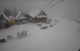 Снег во Львове / Фото: социальрые сети