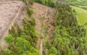 ˣ Карпаты / Фото: Dronarium Украина