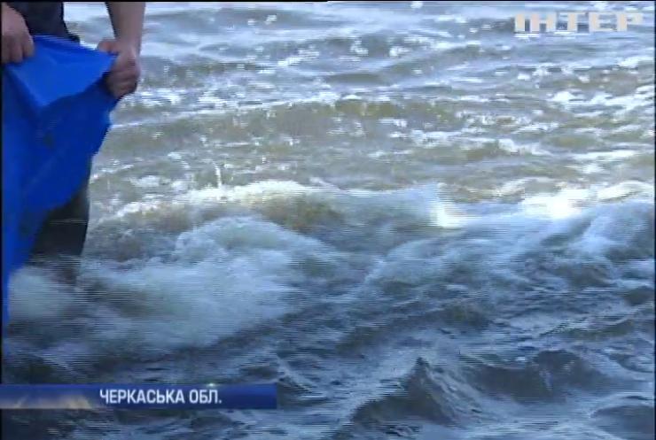 У Черкасах випустили у Дніпро тисячі рибин
