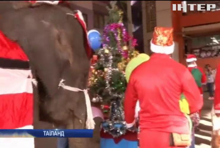 У Таїланді слони поздоровили дітей з Різдвом