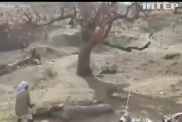 В Індії голодний леопард накинувся на трьох людей