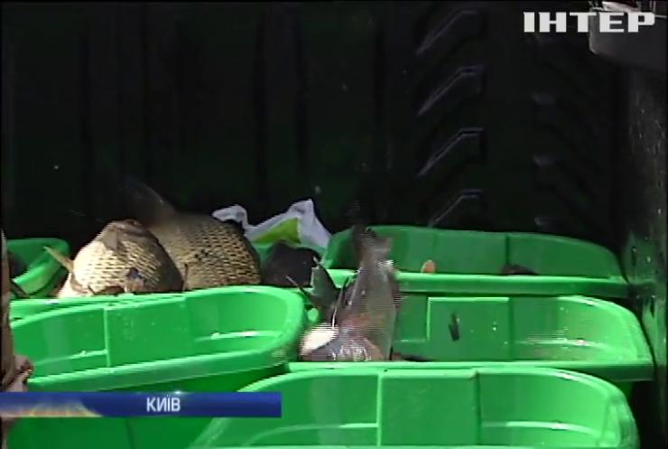 У Дніпро в Києві випустили 2,5 тонни риби