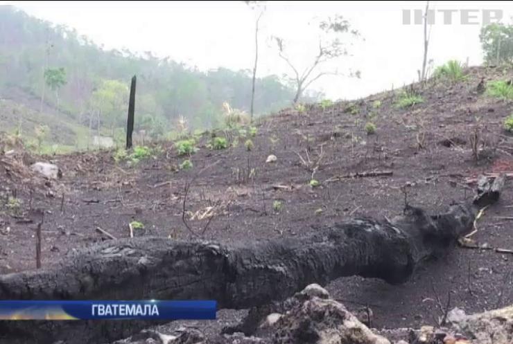 У Гватемалі наркоторговці масово палять ліси