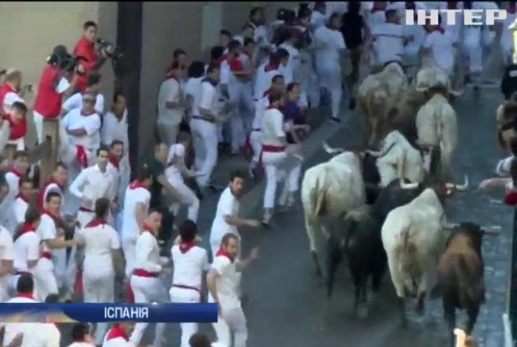 У забігу із биками в Іспанії постраждали 4 людей