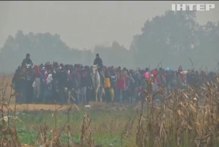 З Німеччини виїхали 55 тисяч мігрантів