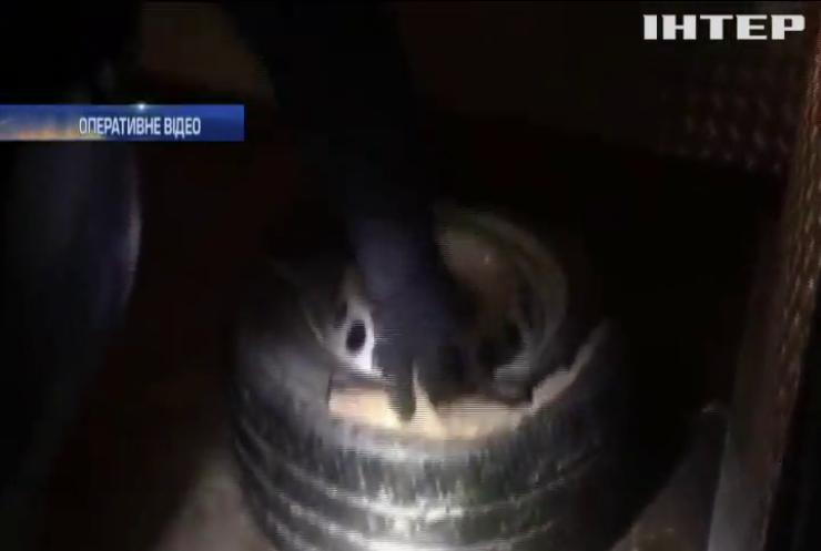 На кордоні з Польщею затримали контрабанду 25 кг бурштину