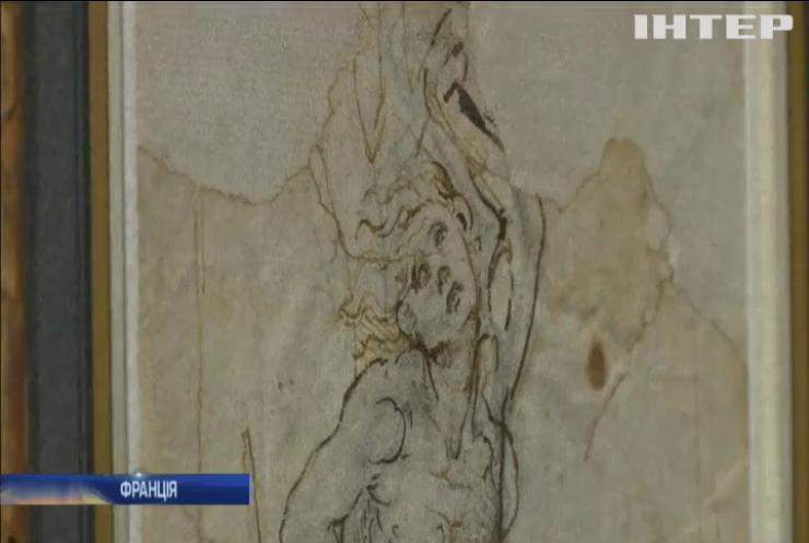 У Франції оприлюднили рідкісний малюнок Леонардо да Вінчі