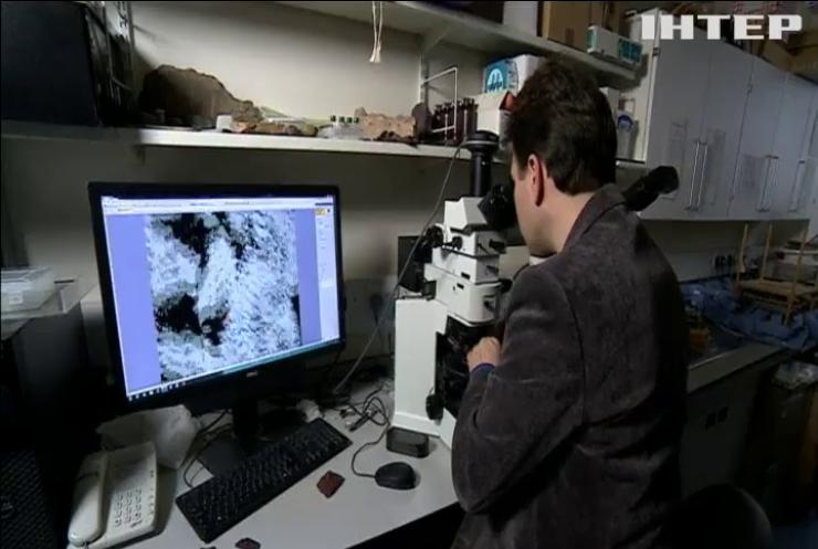 У Канаді знайшли найдавніші сліди життя на Землі