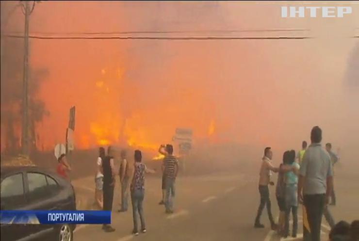 Пожары в Португалии забрали жизни 62 человек