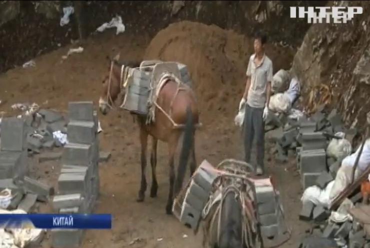 У Китаї відновлювати легендарний мур залучили коней
