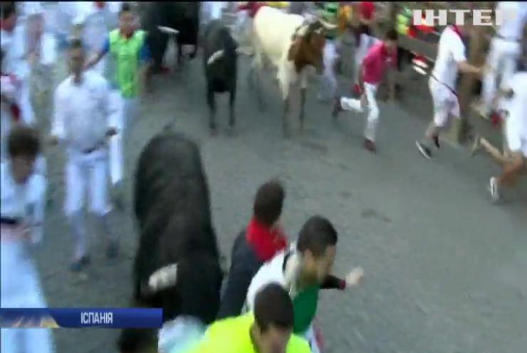 В Іспанії шестеро людей дістали травми під час традиційного забігу з биками