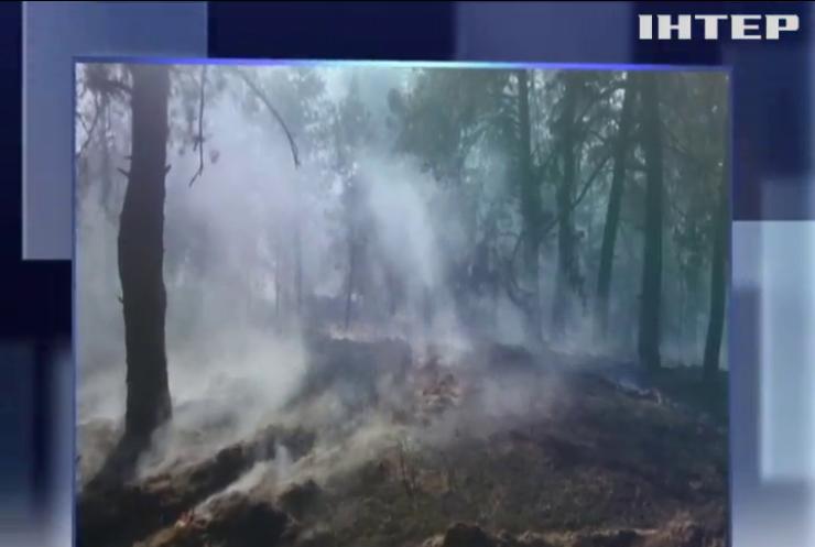 В Днепропетровской области загорелся военный полигон