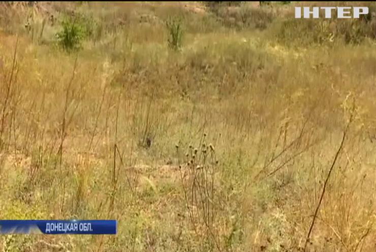 Саперы освобождают Донбасс от мин и снарядов (видео)