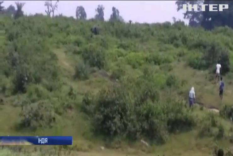 В Індії слон затоптав чоловіка через селфі (відео)
