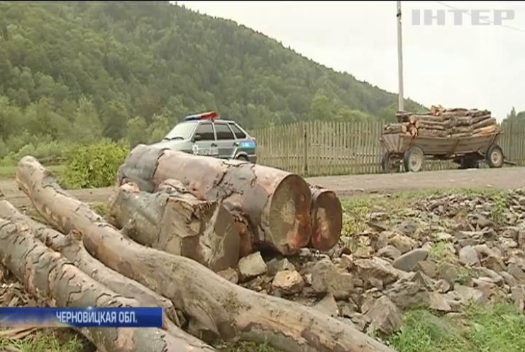 В Черновицкой области жители села возмутились действиями полиции