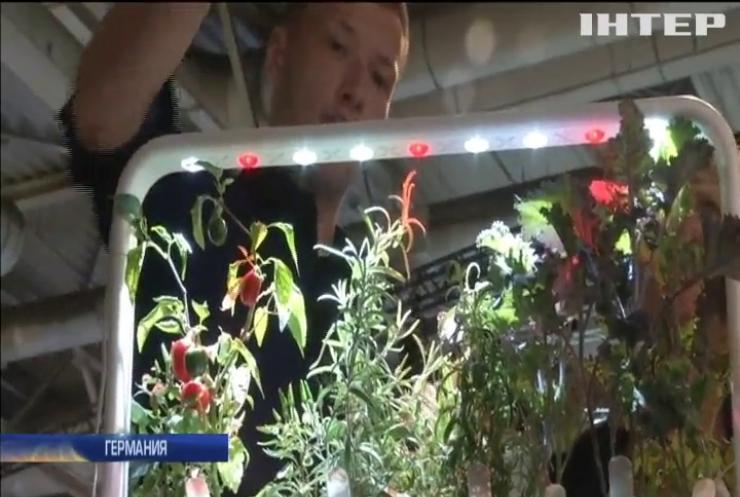 """В Естонії продають """"диво-теплиці"""" за технологією NASA"""