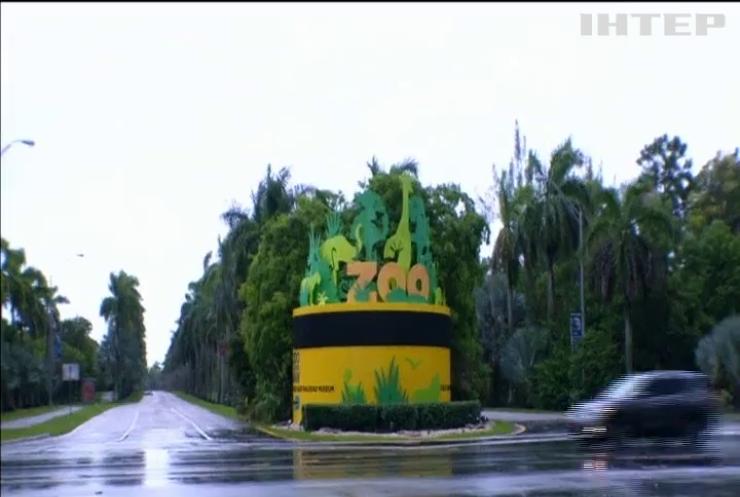 Із зоопарку Маямі терміново евакуювали всіх мешканців (відео)