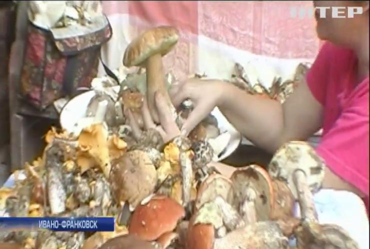 На Прикарпатье более 30 людей стали жертвами отравления грибами