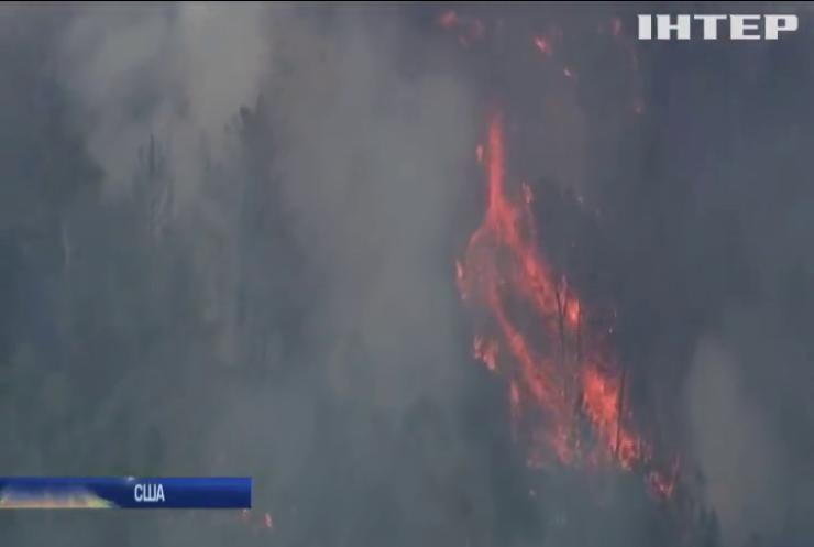 В Каліфорнії зросла кількість жертв лісових пожеж