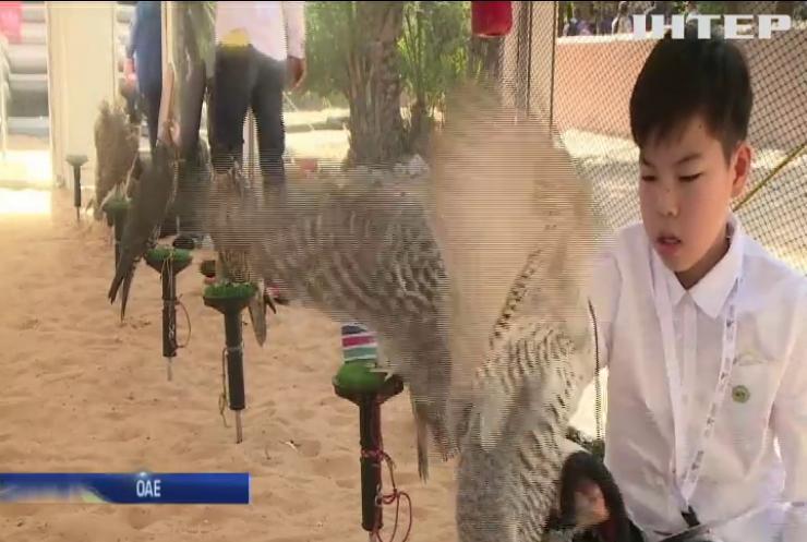 У Абу-Дабі власники соколів похизувалися своїми улюбленцями (відео)