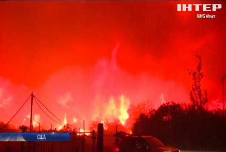 Лісові пожежі у США дісталися Лос-Анджелеса