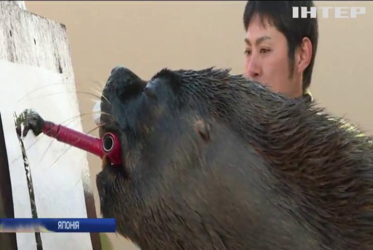 У японському зоопарку морський лев навчився писати