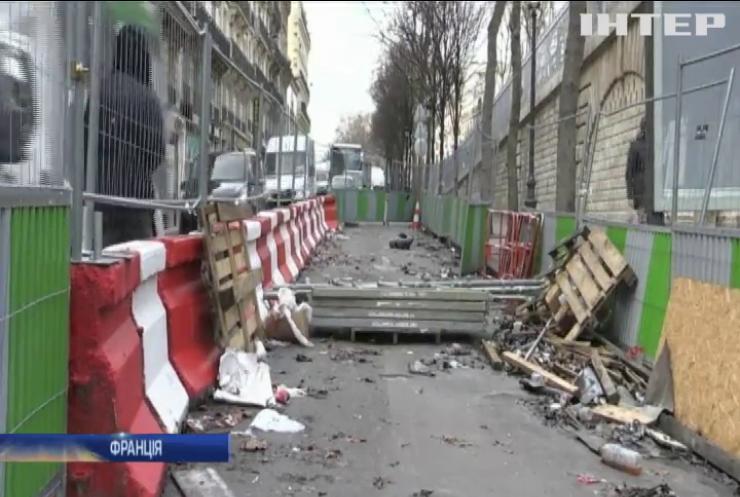Париж потерпає від нашестя щурів