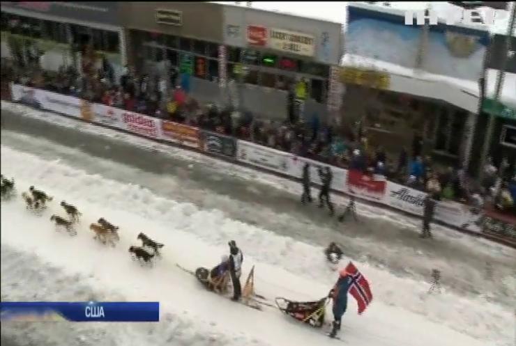 На Алясці стартували перегони на собачих упряжках