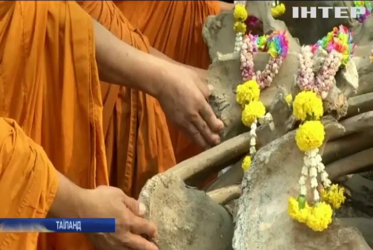 У Таїланді день національного свята слонів (відео)