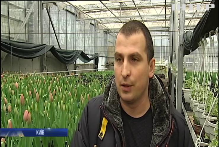 Київ прикрасять мільйонами квітів (відео)