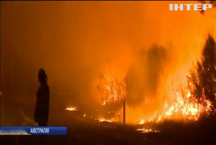 Лісові пожежі у Австралії наближаються до Сіднея