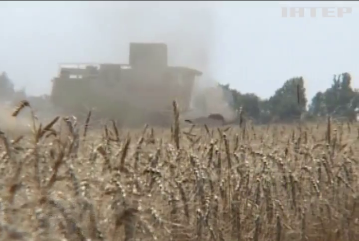 Україна суттєво збільшила аграрний експорт до ЄС