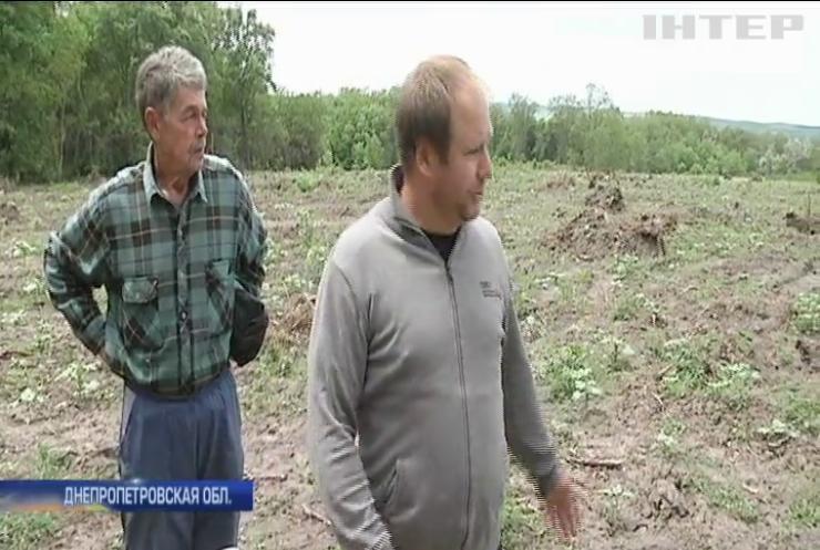 Жители Днепропетровской области протестуют против строительства элеватора