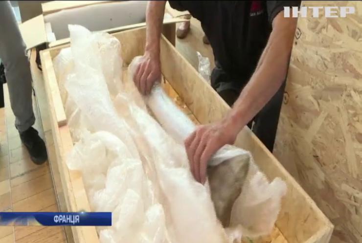 У Франції продали кістки рідкісного динозавра