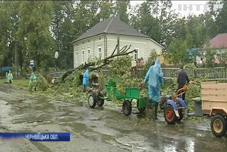 Негода в Україні: десятки сіл залишилися без електрики