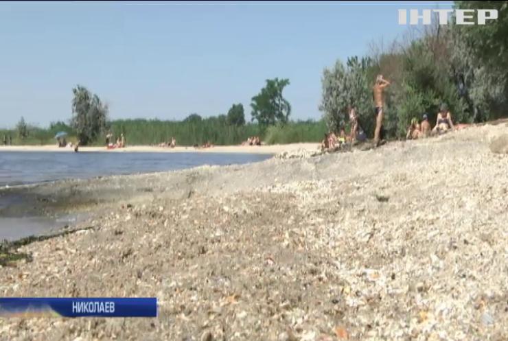 На пляжах Николаева уровень кишечной палочки превышен в тысячи раз - эксперты