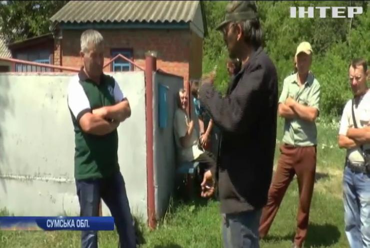 На Сумщині фермери влаштували геноцид бджіл (відео)