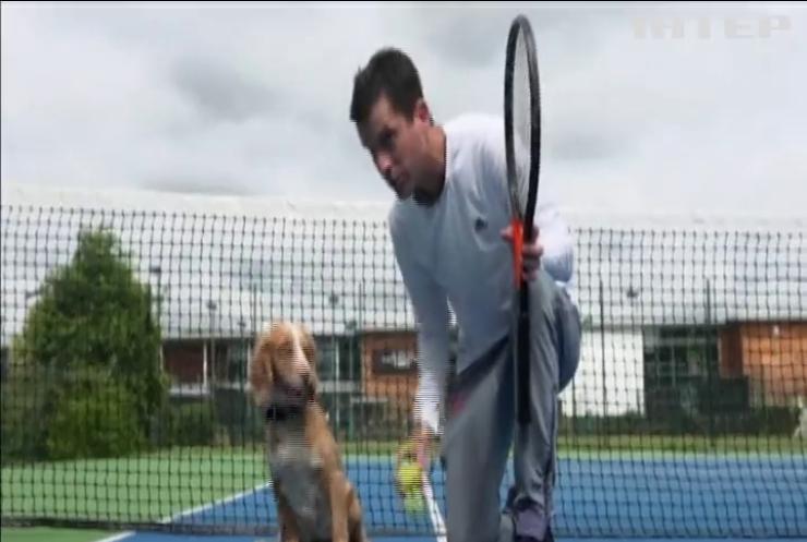 Британський тенісист готує пса до турніру (відео)
