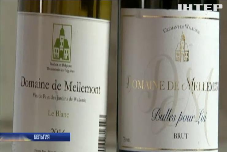 В Бельгии пиво заменят вином
