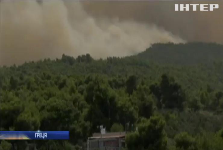 У Греції лісові пожежі забрали життя 20 людей