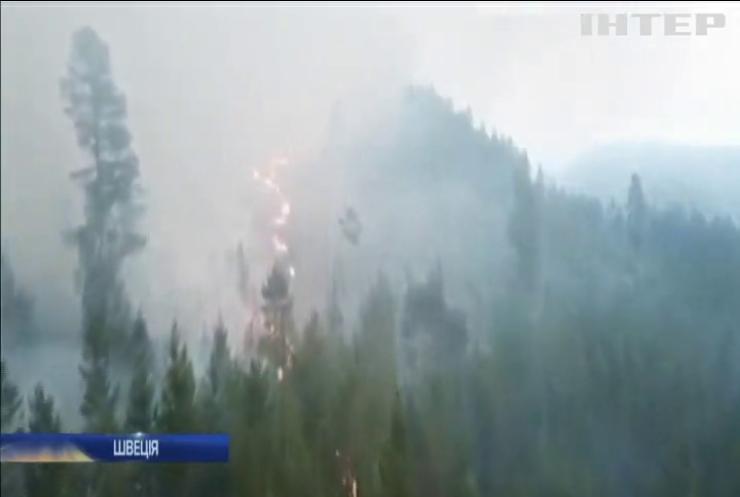 У Швеції вирують лісові пожежі