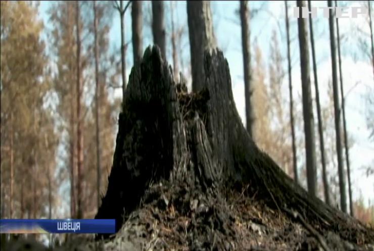 Авіація Швеції скидає бомби на лісові пожежі