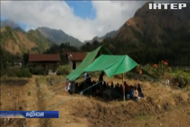 Землетрясение в Индонезии: количество пострадавших продолжает расти