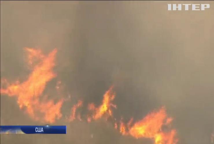 Пожежі у Греції: затримали підозрюваного у підпалі