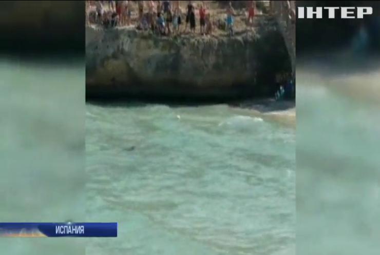 Трехметровая акула атаковала туристов на Майорке (видео)
