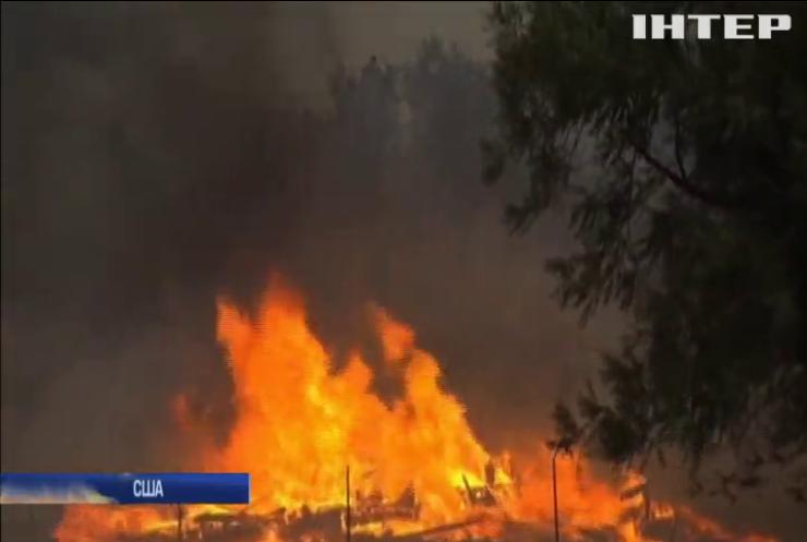 Пожары в Калифорнии назвали самыми масштабными в истории США