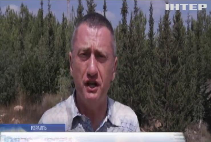 Палестинские террористы жгут поля Израиля (видео)