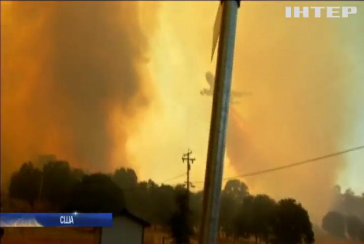 Неймовірна спека спричинила масштабні лісові пожежі у Португалії