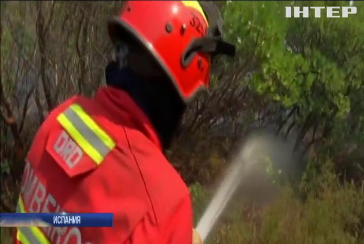 Аномальная жара в Европе привела к масштабным пожарам