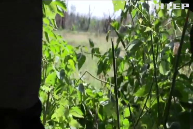Війна на Донбасі: бойовики б'ють із гранатометів і великокаліберних кулеметів